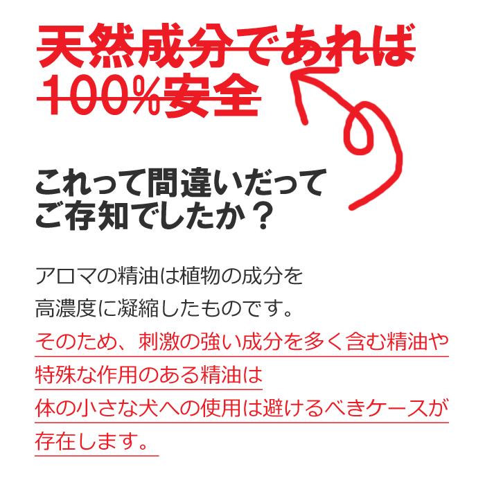 ダメな理由_edited-1