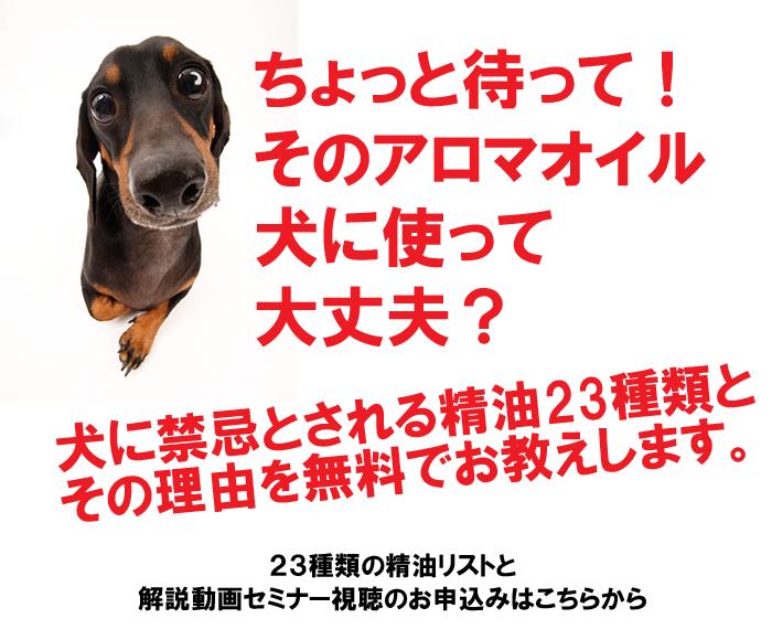 犬に禁忌なアロマ精油