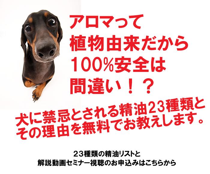 犬に禁忌なアロマ